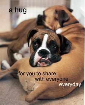 may 26 05    a hug