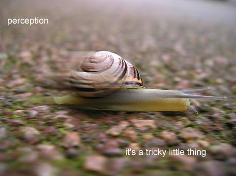 jan 26 06  perception
